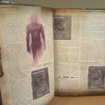 DnD Handbook